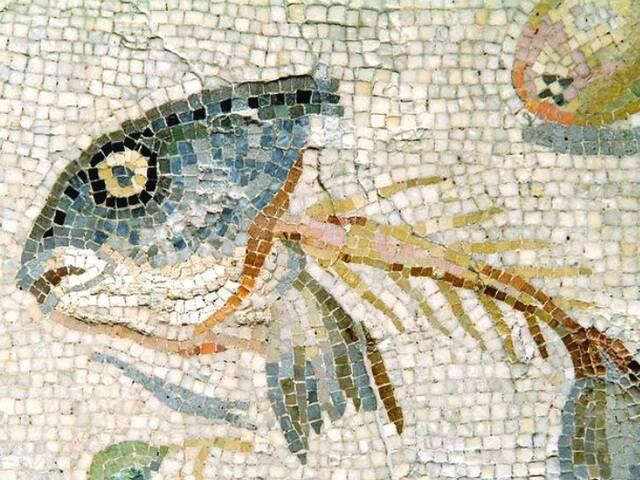 Nature morte avec restes de poisson, mosaïque romaine