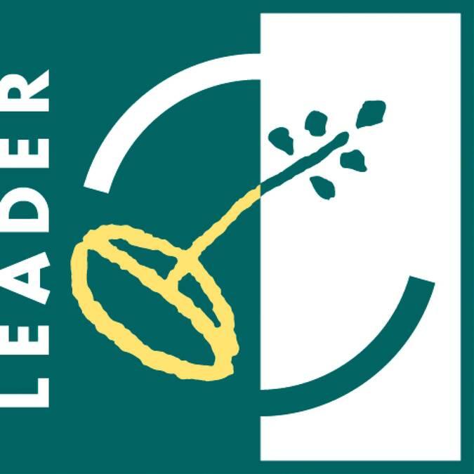 Logo Leader - Vorgium