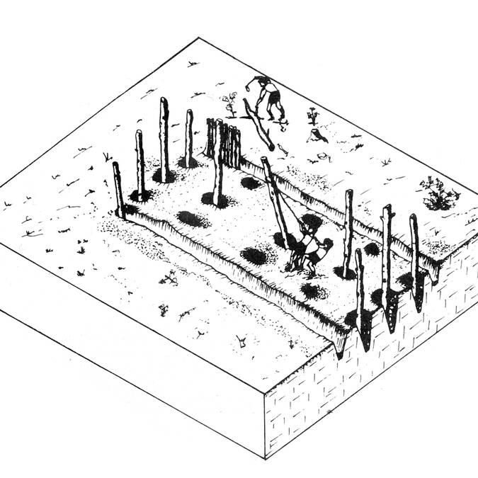 Pléchatel état 1, dessin MG